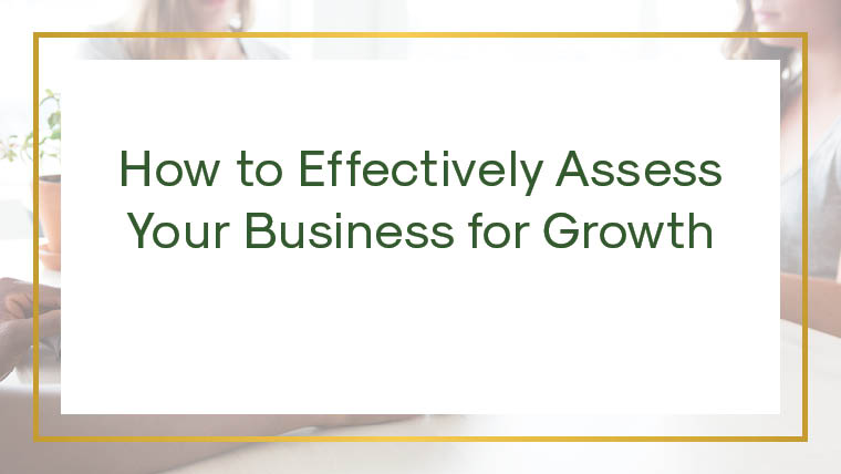 How to Effectively Assess Your Business for Growth